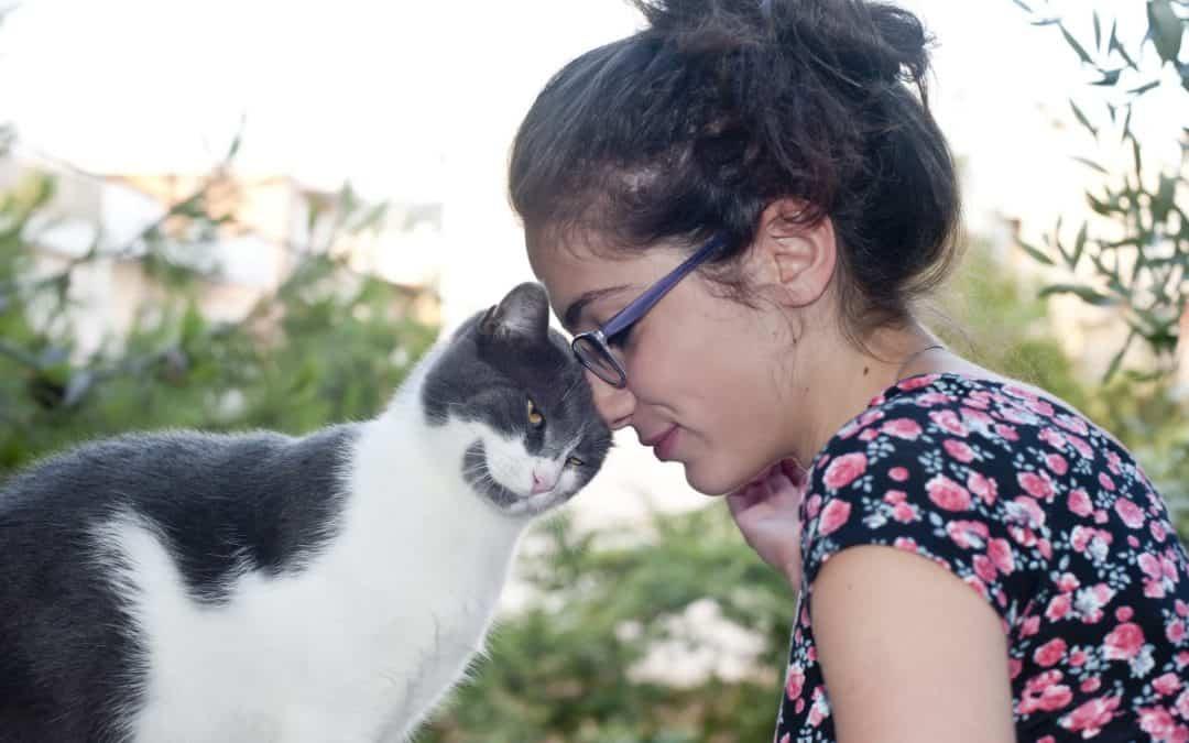 Happy Pet Club – Aktuell 05/2019