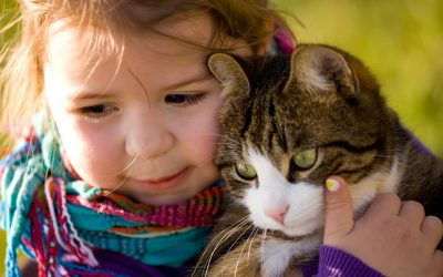 Warum wollen Kinder ein Haustier?